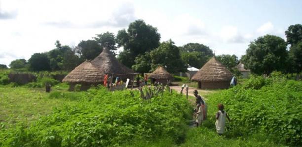 SON PÈRE MORT AU PAVILLON SPÉCIAL : Le fils du chef de village de Toubacouta très en colère