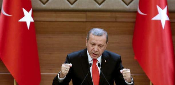 """La Turquie n'est pas """"un hôtel pour djihadistes"""" et les renverra dans leurs pays d'origine"""