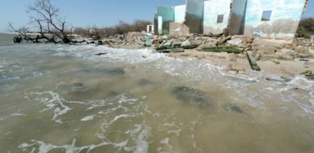 Bargny : Un cimetière inondé, des ossements déterrés