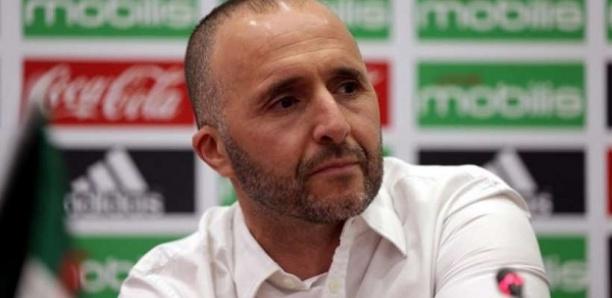 Djamel Belmadi, coach Algérie : ''On peut perdre la finale…''