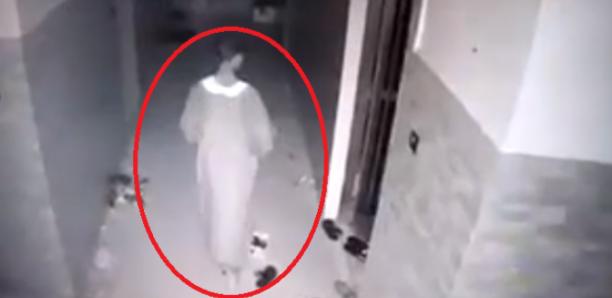 Magal Touba : Un voleur pris par une caméra de surveillance