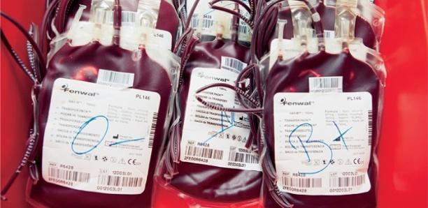 Matam : Pénurie de sang à l'hôpital de Ourossogui