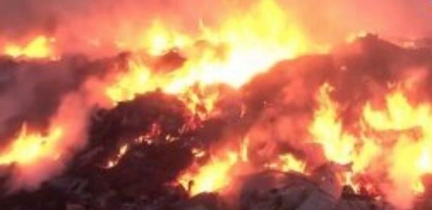 Kédougou: Un patrimoine de l'Unesco en flammes