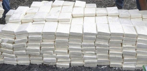 Cocaïne saisie par la marine : Une femme arrêtée à Nord Foire