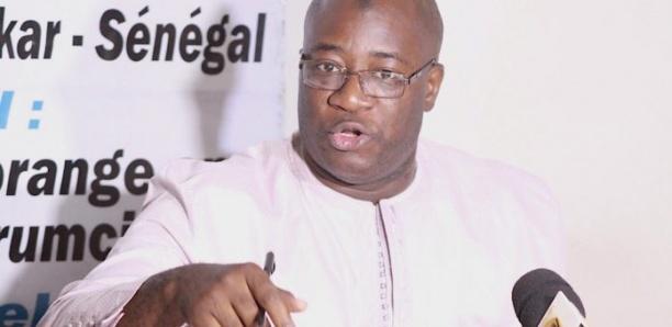 Coupe abusive de bois dans le Foulado: L'invite du Forum civil à l'Etat du Sénégal