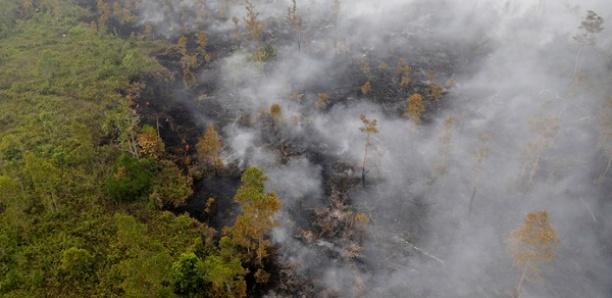10 millions d'enfants menacés par les incendies en Indonésie?