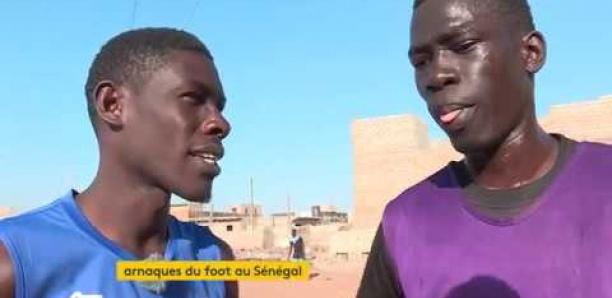 Seneweb News
