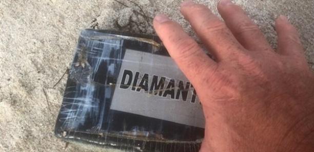 L'ouragan Dorian ramène plusieurs kilos de cocaïne sur les plages de Floride