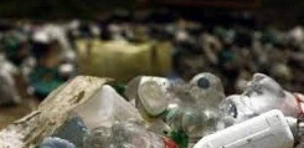 Inde : Bombay déclare la guerre au plastique