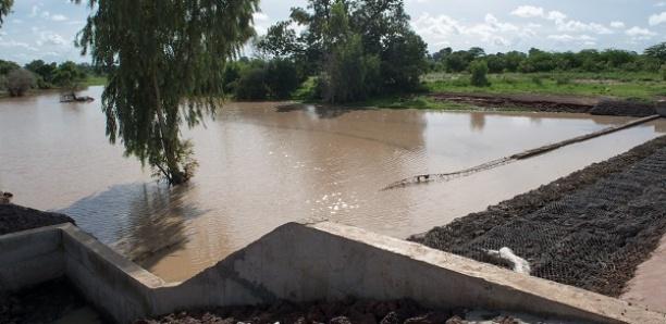 Kaffrine : Un enfant de 12 ans meurt noyé
